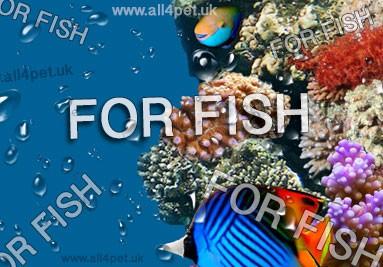 dla ryb